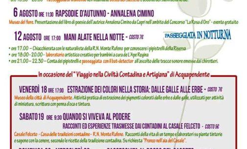 Torre Alfina – Museo del fiore: gli eventi dal 1 al 15 agosto!!