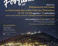 Palestrina -Luci su Fortuna. Passeggiate notturne al Santuario della dea Fortuna Primigenia