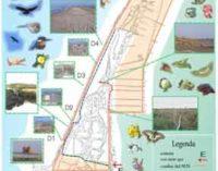 ENEA, soluzioni per aree umide contro deficit idrico