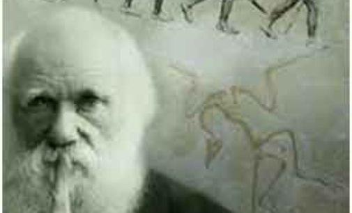 Evoluzionismo, creazionismo e la costante presenza della Coscienza nella materia
