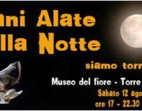 Museo del fiore – Torre Alfina – Mani alate nella notte … siamo tornati
