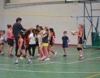 Polisportiva Borghesiana volley, Criscuolo: «La politica comunale ci ha frenato, ma non molliamo»
