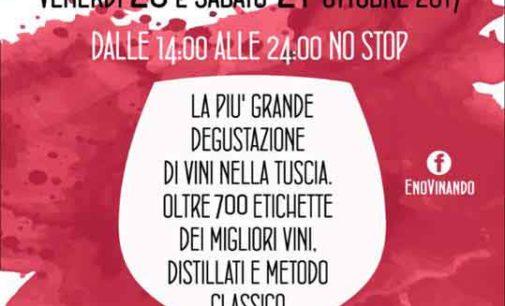 Vinando, oltre settecento vini in degustazione alla Vinitaly della Tuscia