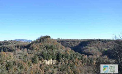 Parco Valle del Treja – Stanno bene i boschi del Parco tutelati dai Progetti Ossigeno