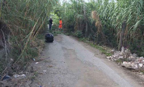 Frascati, interventi di bonifica ambientale in Via di Grotti Dama