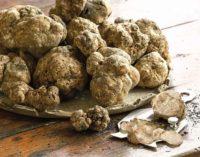 I profumi del bosco nel piatto, a Canterano (RM) è tempo di Sagra del tartufo