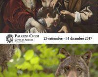 Mostre ad Ariccia: 'Dai Carracci a Solimena' e 'Le meraviglie del Parco Nazionale d'Abruzzo, Lazio e Molise'