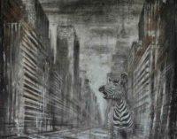 """Spaziocima – apre  """"Art Collection"""""""
