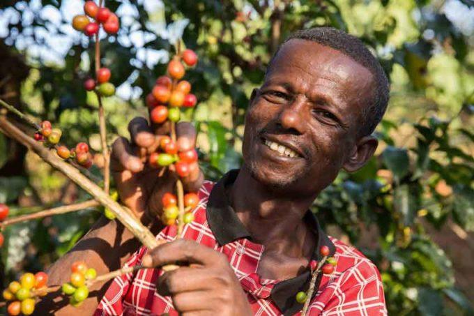 Commercio equo certificato Fairtrade: vendite globali a 7,8 mld di euro