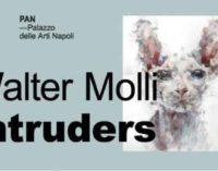 La Mostra Intruders di Walter Molli   al PAN dal 13 al 22 ottobre