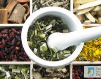 Giornata di riconoscimento di piante medicinali e spontanee