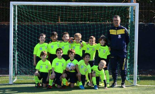 Fc Frascati calcio, Sebastiani: «Il primo obiettivo dei miei Piccoli Amici è l'educazione sportiva»