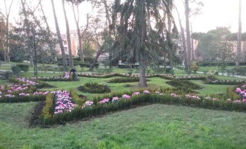 Albano Laziale, Villa Doria: piantate 2.500 piantine