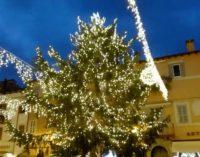 Castel Gandolfo – Arriva l'albero di Natale  nella storica piazza del borgo