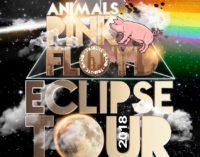 Lo spettacolare tributo di una band romana ai Pink Floyd