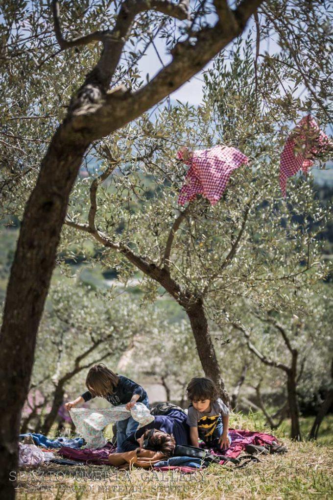 """Torna in Umbria """"Pic & Nic a Trevi. Arte, musica e merende tra gli olivi"""""""