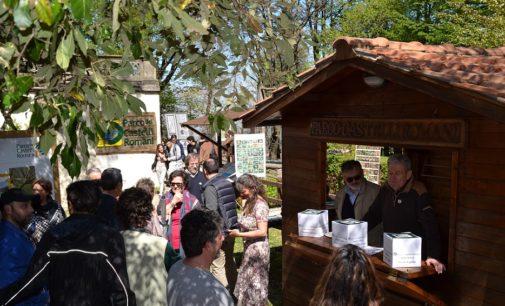 """""""Festa del Parco"""", la giornata dedicata all'ambiente dei Castelli Romani"""