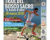 Torna a Nemi la corsa Trail del Bosco Sacro