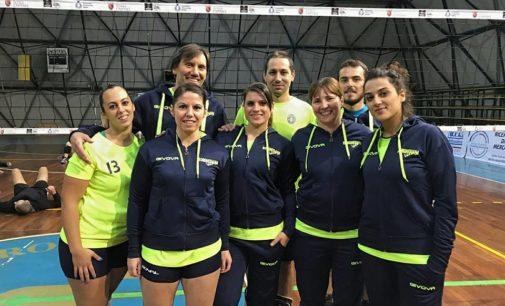 Polisportiva Borghesiana volley, Criscuolo: «Sempre maggiori richieste per le squadre Amatoriali»