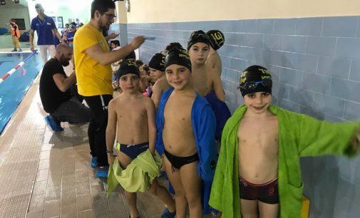 3T Frascati Sporting Village (nuoto), Ippoliti: «Grandi ok a Ostia, piccoli protagonisti a Guidonia»
