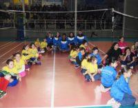 Sport Pallavolo Eventi- Domenica mattina presso la Palestra Marchesi di Genzano