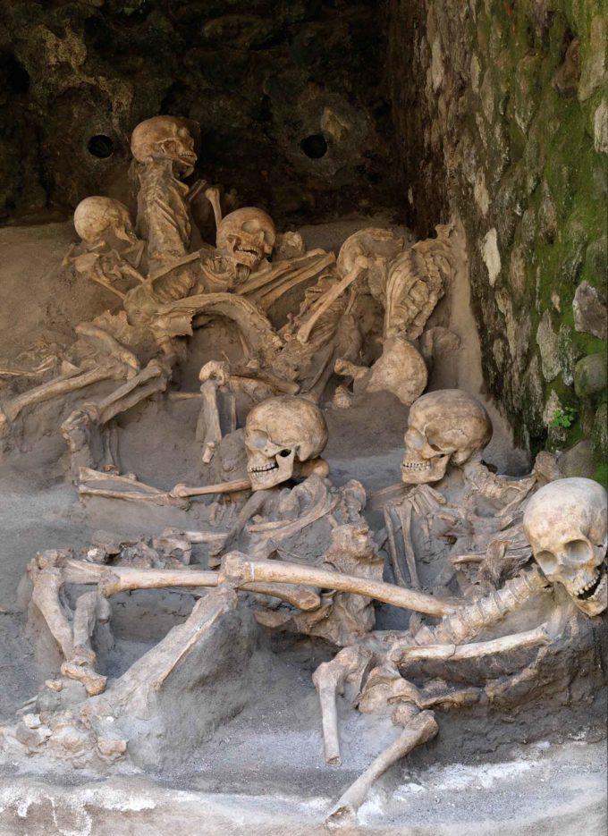 Esperti di Genetica in visita a Ercolano