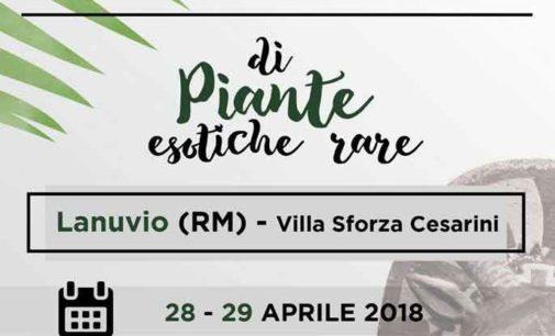 """Lanuvio, a Villa Sforza Cesarini """"Gli Orti di Giunone"""" la Mostra Mercato Nazionale di Piante esotiche rare"""