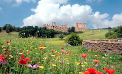 Archeo Trekking lungo l'Appia Antica e Yoga dei Luoghi.
