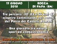 """ROCCA DI PAPA – NASCE LA """"GRANPASSO"""", CAMMINO NEL CUORE VERDE DEI CASTELLI ROMANI"""