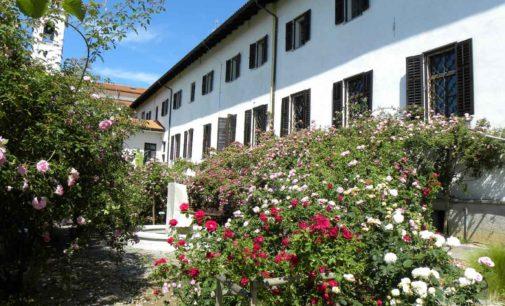 13° Festival delle Rose di Nova Gorica