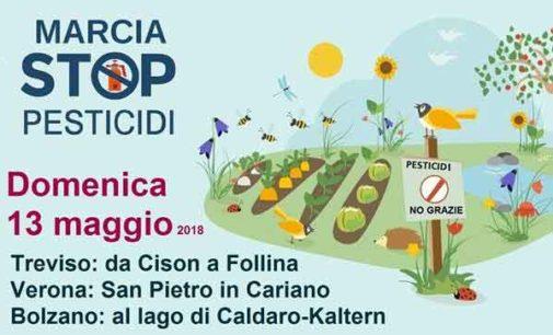 WWF Italia  Rapporto ispra pesticidi nelle acque 2018