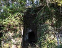 Visite guidate tra natura e necropoli