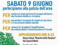 Frascati – Macchia della Sterpara 2.0 una giornata  di impegno civico e sociale per il Bosco Ceduo