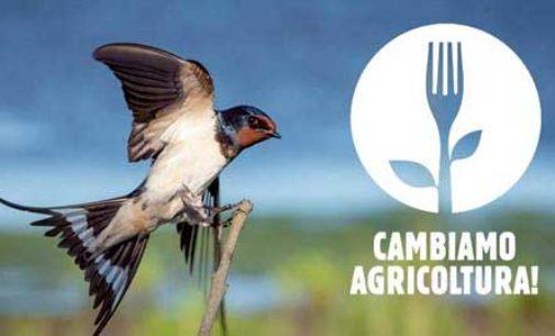 """Il """"cambiamento"""" del modello agricolo europeo Delude ambientalisti e mondo del biologico"""