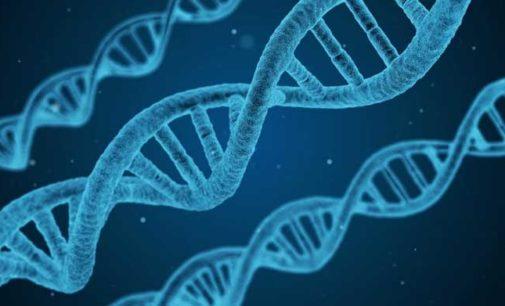 """Ricerca italiana: """"Identificati geni che regolano lo comparsa di tumori nella sclerodermia"""""""