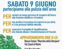 Frascati: a sabato 9 per conoscere il Bosco Ceduo