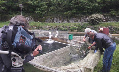 FEM a Superquark con le frontiere innovative della pescicoltura