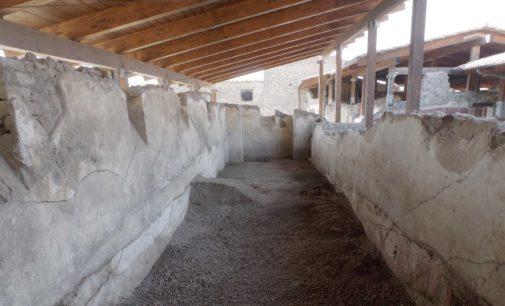 A Stabiae una nuova campagna di scavi condotta dal Museo Ermitage