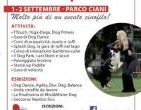 Cani: arriva 'Lugano a 4 Zampe', per un weekend con migliaia di amici a 4 zampe