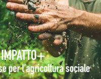 Più risorse per l'agricoltura sociale