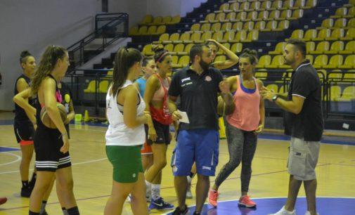 Club Basket Frascati (serie B/f), Frisciotti: «Felice di essere tornato, il gruppo è valido»
