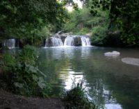 Visita guidata tra storia e natura  Domenica 14 ottobre immersi nel Parco