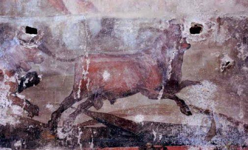 Pompei – RIAPRONO LA CASA DEI CEII E IL COMPLESSO DI GIULIA FELICE