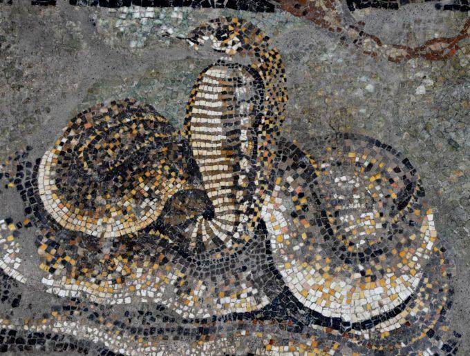 Pompei – DALLA MANUTENZIONE ALLO SCAVO DUE DIMORE DI PREGIO TORNANO ALLA LUCE nella REGIO V