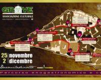 Tra vini di qualità e prodotti tipici ecco il percorso itinerante di Orte in Cantina