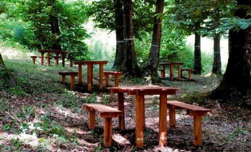 """Parco dei Castelli Romani – """"Cose Mai Viste"""": visite guidate, appuntamenti"""