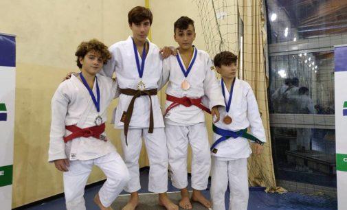 Asd Judo Frascati, week-end d'oro: gli atleti tuscolani conquistano quattro titoli regionali