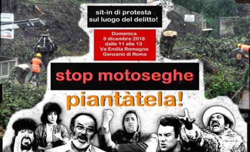 Genzano di Roma  –  Sit-in di protesta per contestare l'abbattimento selvaggio di alberi innocenti