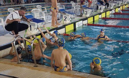 Domenica di gare per l'F&D H2O che fa il pieno di podi a Frosinone