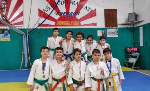 """Asd Judo Frascati, festa al trofeo """"Quattro Stagioni"""". E sabato c'è lo stage con Akimoto"""